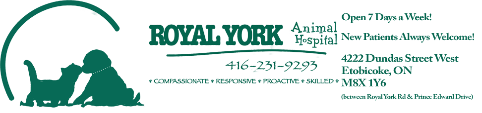 Logo for Royal York Animal Hospital |  Etobicoke Animal Hospital | Veterinary Hospital in Etobicoke