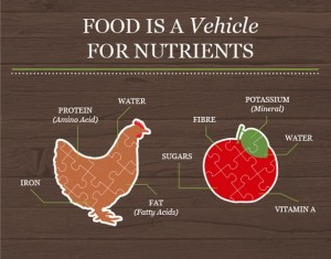 Nutrition for Pets